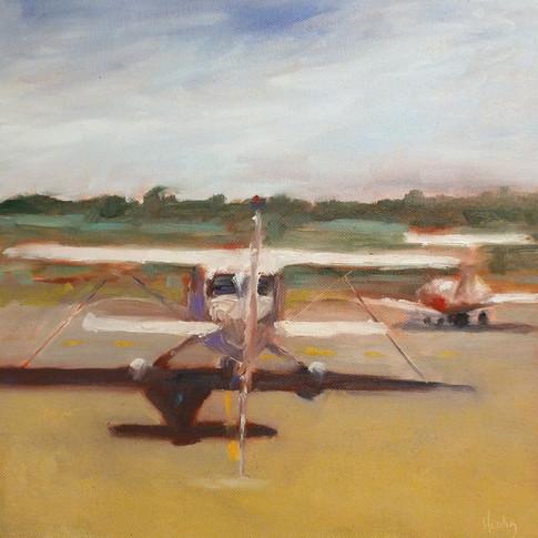 wings field