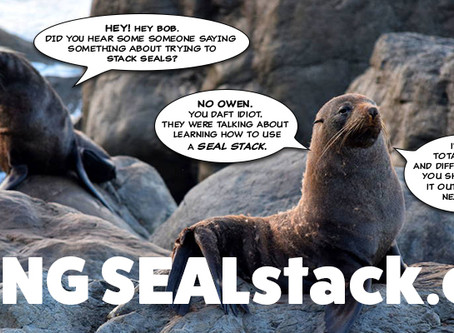 Using the SEAL Stack