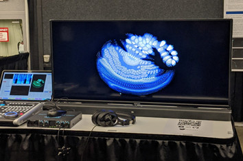 Monitor showing artificial ears hearing music