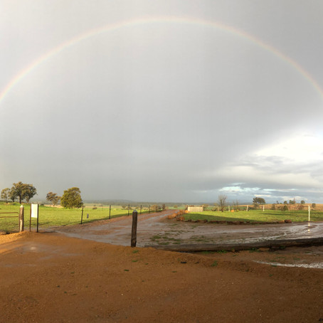 Newcastle to Dubbo - 3 nights, 2 kids, 1 rainbow