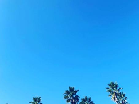 海の中道海浜公園に行ってきました✨✨