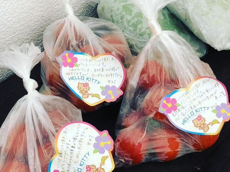 プチトマトと紫蘇が入荷しました🍅🍃✨✨