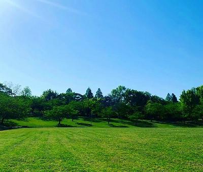 春日公園に行ってきました😊✨