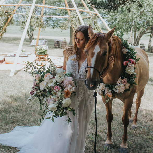 Horse with tipi in background.jpg