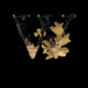 Wonder-Whimsy-TRANSPARENT.png