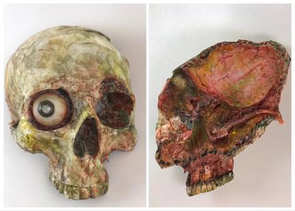 Dismembered skull