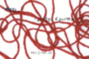 [교실속그림책221] 1교시부터 6교시까지(권동우)-1.jpg