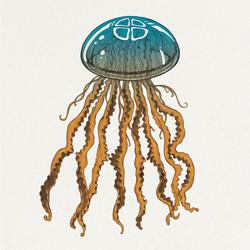 AHAB Jellyfish