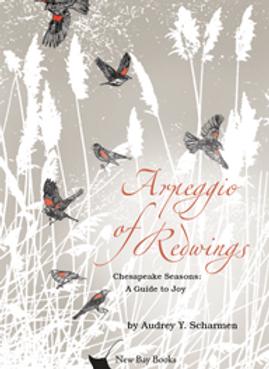 Arpeggio of Redwings