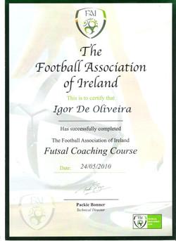 THE FAI - IRELAND