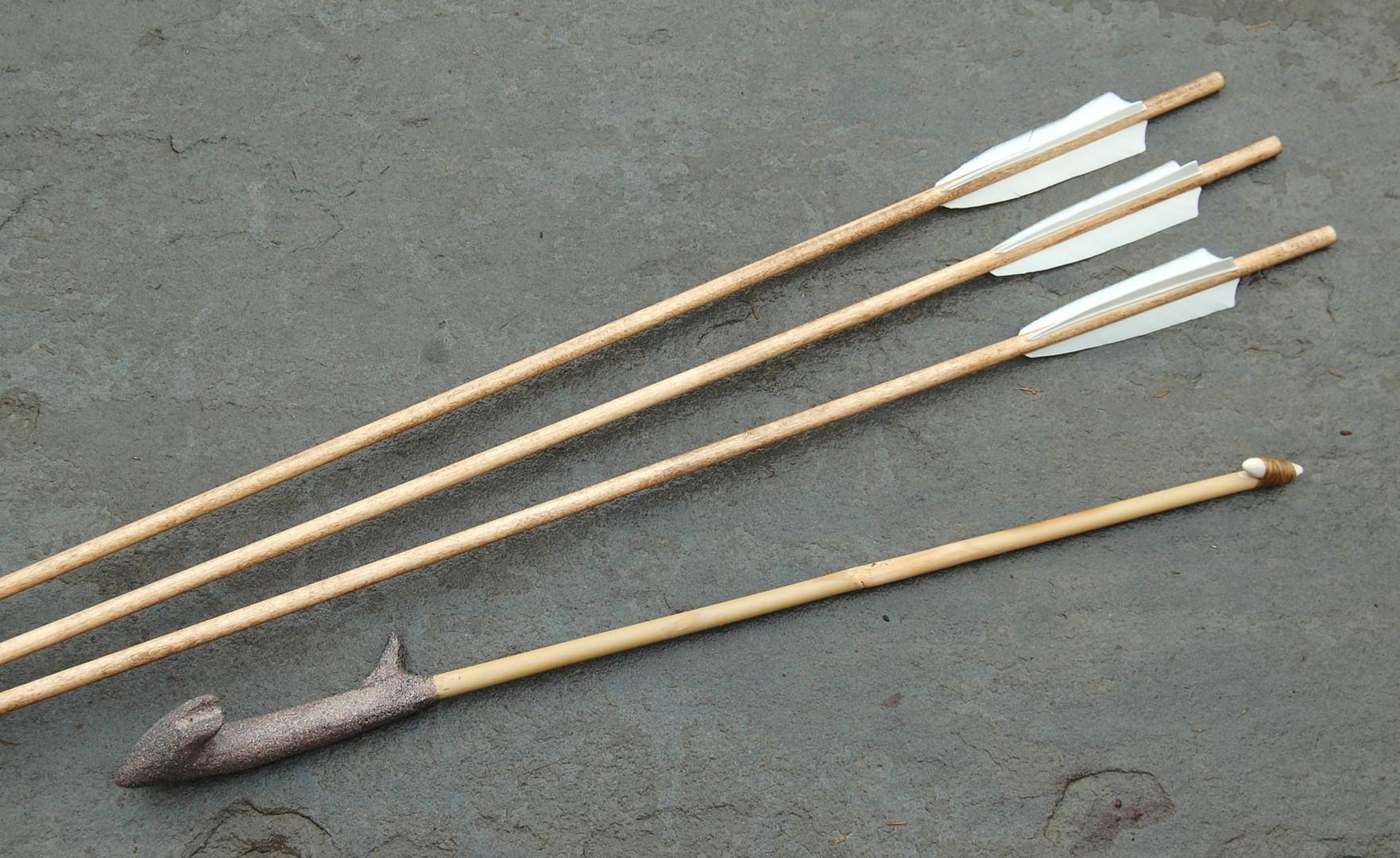 Modern Sport Thrower and Darts