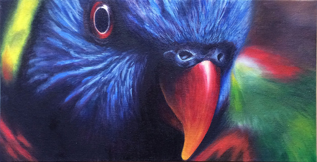 wilson-bird.jpg
