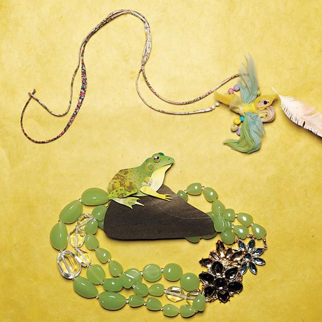 Frog on a rock with bracelet