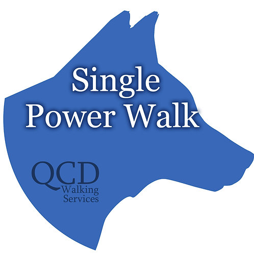 Single Power Walk: One-Hour