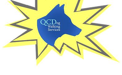 QCD Logo – Dog Walkers in Brooklyn | QC Dog Walking Services