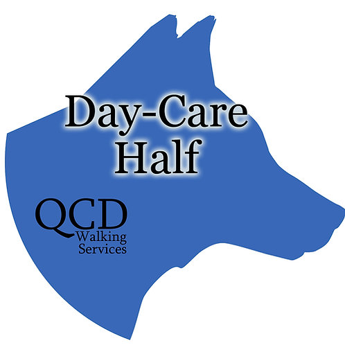 Day-Care: Half-Day
