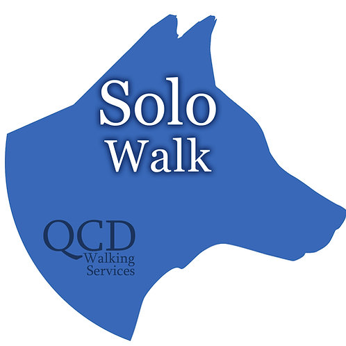 Solo Walks Extension: for dogs that need to be walked alone