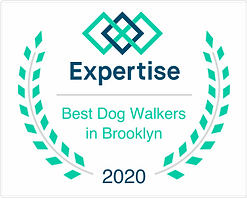 """Best Dog Walkers in Brooklyn"