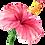 Thumbnail: Lavender Hibiscus Scrub