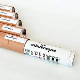 Minibosque -  Lona Curiocity