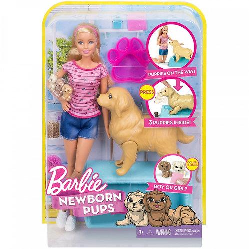 Cachorritos Recién Nacidos
