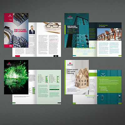 Callcredit White Paper Design