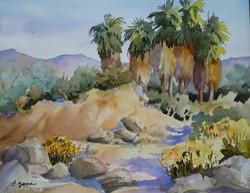Palm Preserve 1