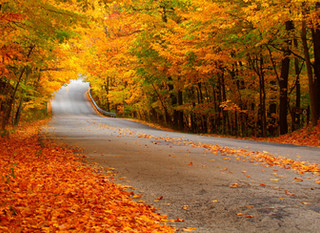 the calendar's relentless progression: autumn leaves