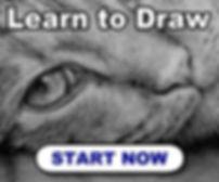 336x280-learn-to-draw-cat.jpg