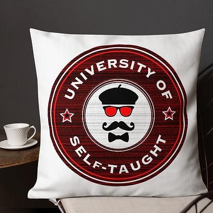 University of Self Taught Art Meme Artist Gifts Premium Pillow