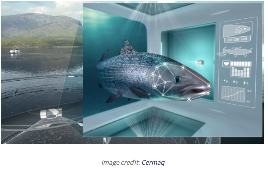 AI and machine learning for improved aquaculture with Cermaq's iFarm- B-AIM PICK SELECTS