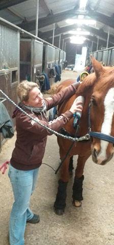 Bianca Wagner Pferdemassage
