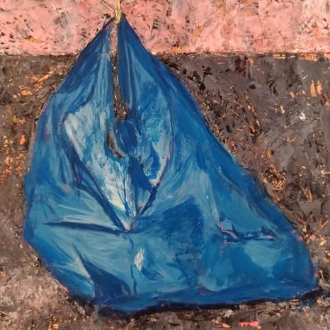 Plastic Bag Series