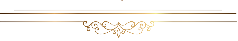New York Escorts Services