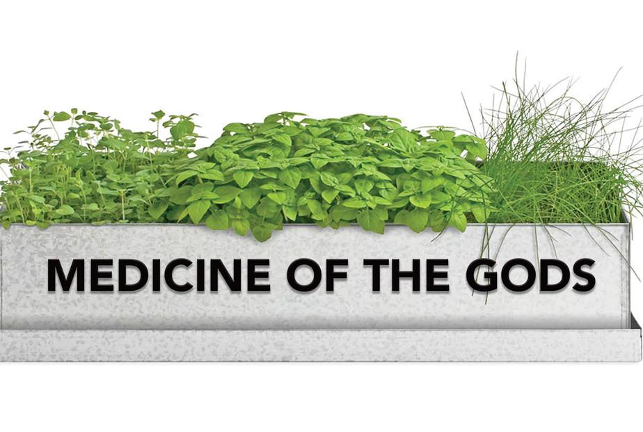 Medicine-Of-The-Gods.jpg