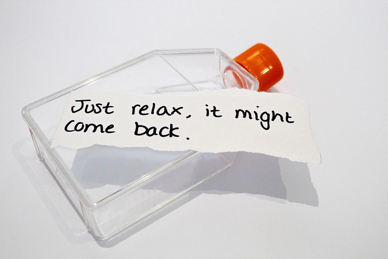 Flask31lr.jpg