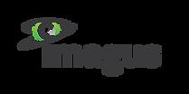 Imagus Logo - Finalised 01-02-1.png