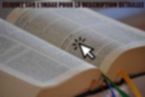 BIBLE-ESSENIENNE-DESCRIPTION.jpg