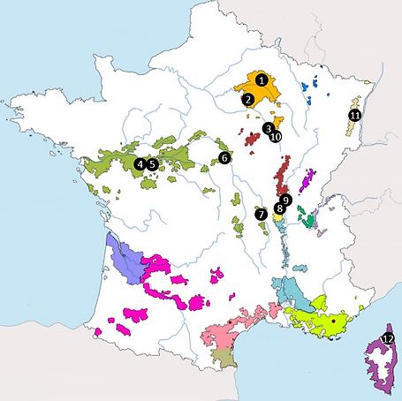 Coq au Vin map.png