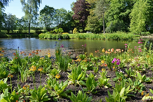 Winderwath Gardens.jpg