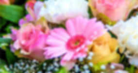 bere-regis-floral-group.jpg