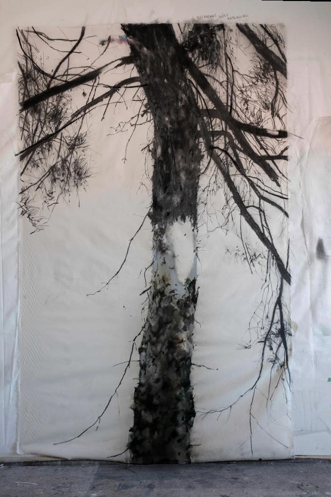 Portrét_hladného_stromu,_240x150cm,_kr