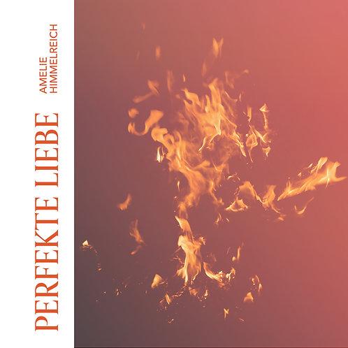 Perfekte Liebe - MP3