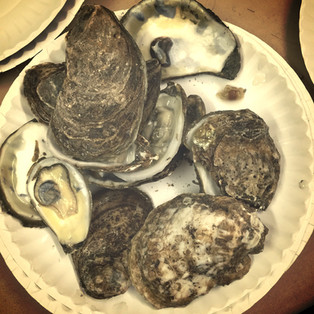WHAT'S INSIDE AN OYSTER