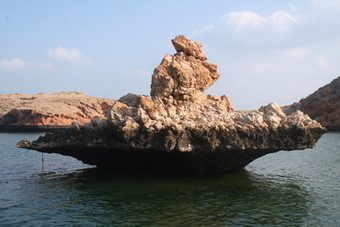 PHOTO OF THE DAY: MUSHROOM ROCK