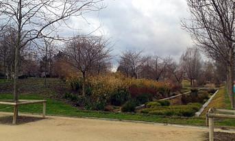 Parc des Batignolles, Paris 2015.