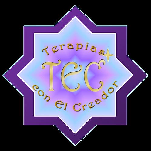 REPASO Talleres Terapeuta o Consultor TEC y LSR