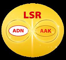 LOGO ADN y AAK.png