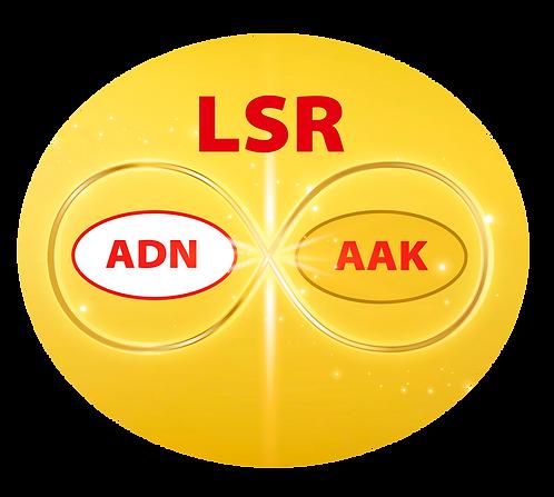 6 Terapias Holísticas LSR + 23 Sanaciones LSR AAK y ADN