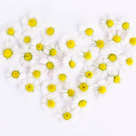 Llenen de Amor sus corazones. Mensaje de la Madre María